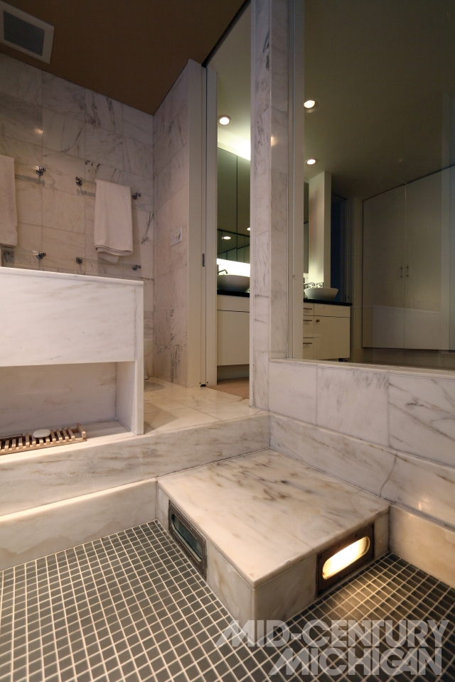 Gunnar Birkerts - Freeman House - Master Bathroom Shower 02